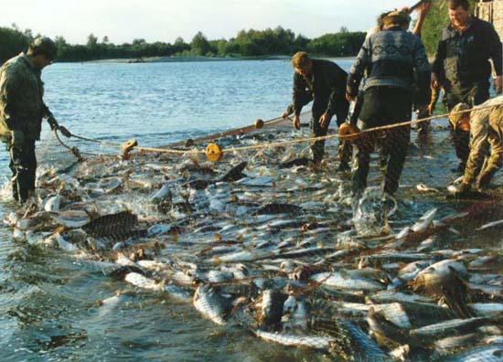 рыбалка в магадане фото